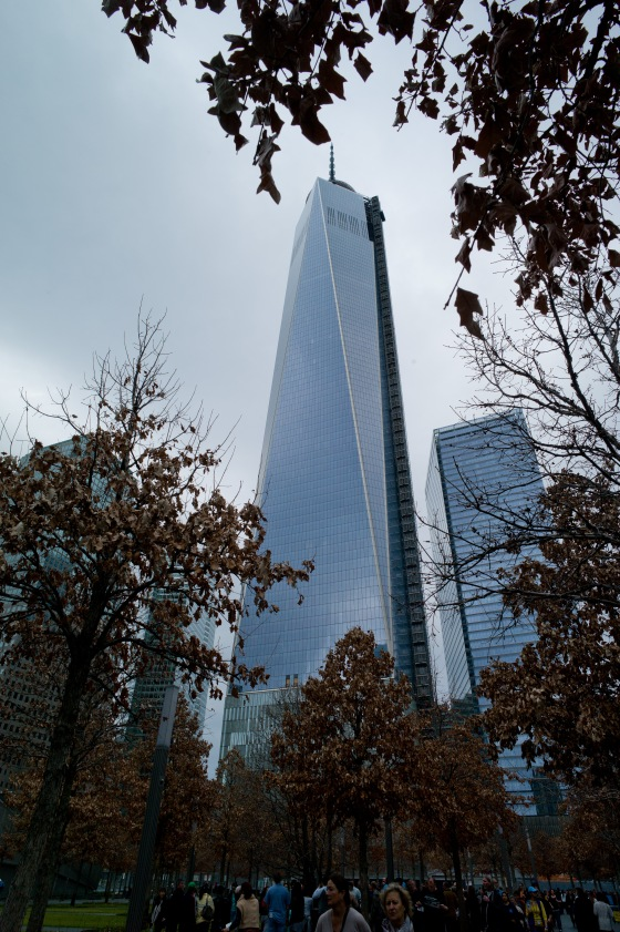 the newly rebuilt WTC..literally up from the ashes