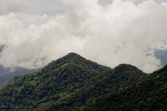 foothills of Kinabalu