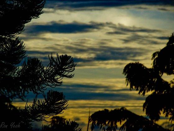 sunset over fraser's hill