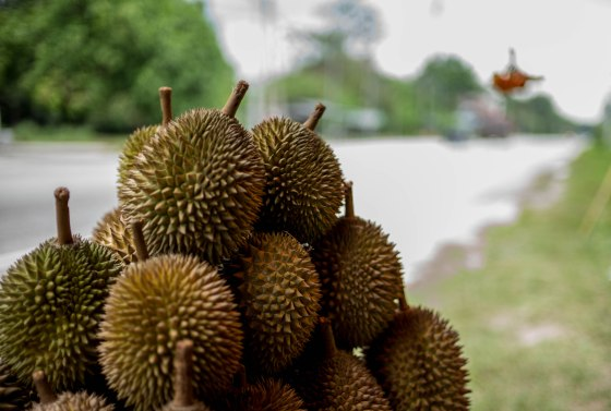 The king of fruits..the wonderful Malaysian durian and only 5MYR or S$2 or USD1.50