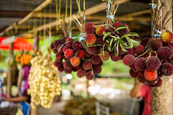 and there were lots of other tropical fruits as well...