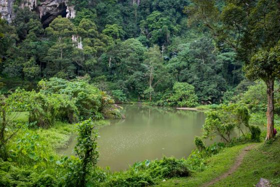 a beautiful lake surrounded by hills and 70 durian trees..the owner's private orchard!