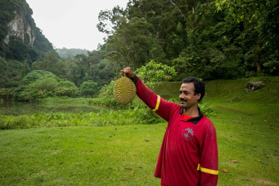 the triumphant gardener with his prize...he kindly offered to share the durian with me