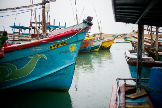 the local fishing boats