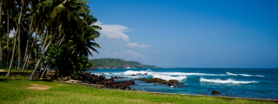 the surf and coconut trees made for a stunning vista