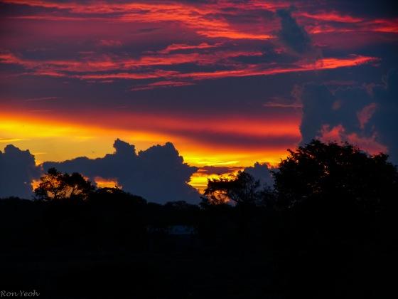 Dawn over Yala