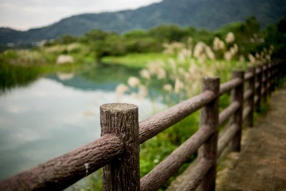 quite pretty scenery