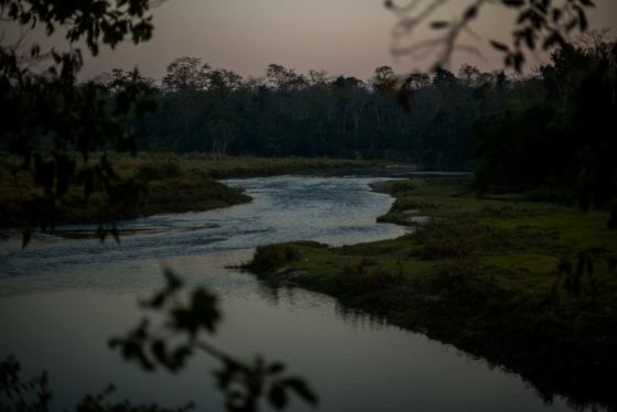 As the sun set, we discovered that we had to take our shoes and socks off to wade across the Rapti river back to our lodge! Not the easiest thing to do when laden with 2 cameras and binoculars!