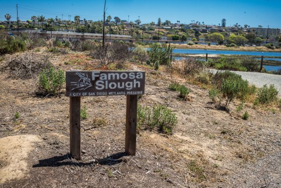 Famosa Slough..San Diego Wetlands