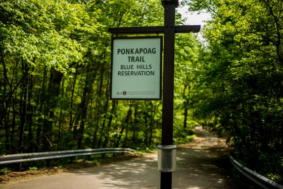 And after another long walk, I arrived at the beginning of the Ponkapoag Trail...