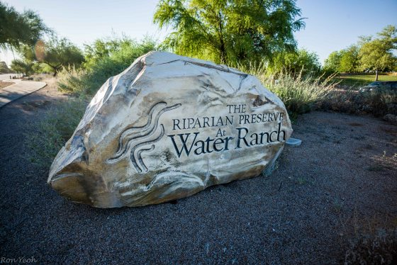 the main entrance to the Gilbert Water Ranch Riparian Preserve