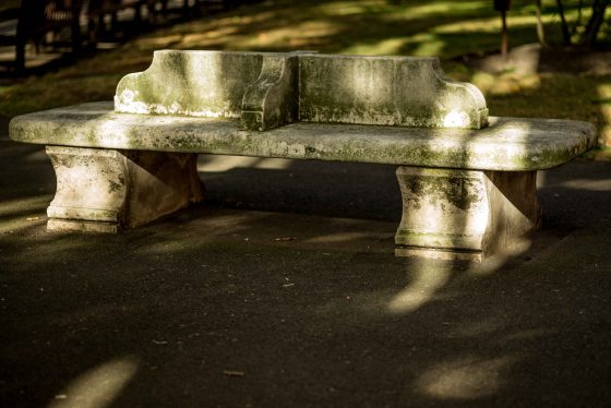 It's right where this ancient park bench is..