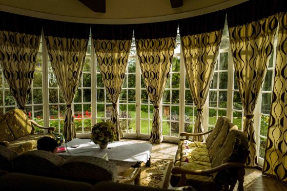 the view of the front garden through the french windows of the living room