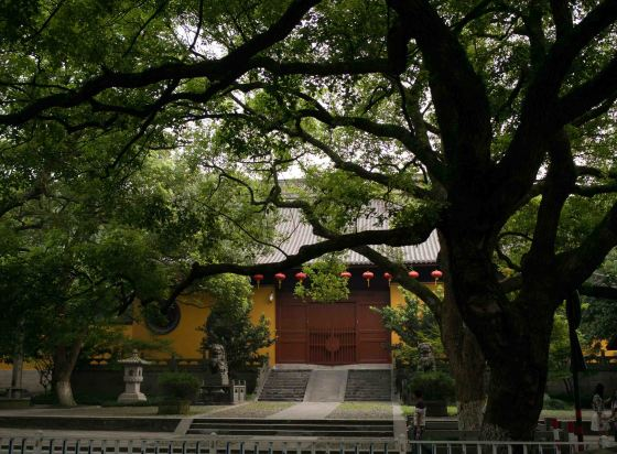 close up of teh Nanping Wan Zhong temple