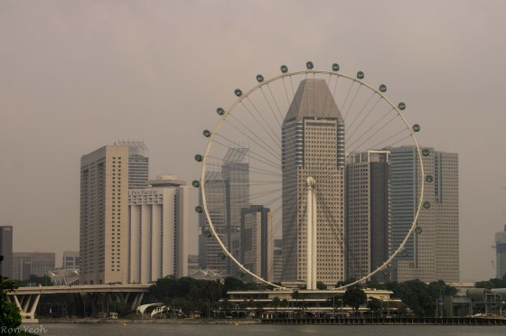 View of the SIngapore Flyer from Gardens by the Bay